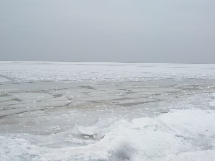 WInter in Gdansk - Baltic coast
